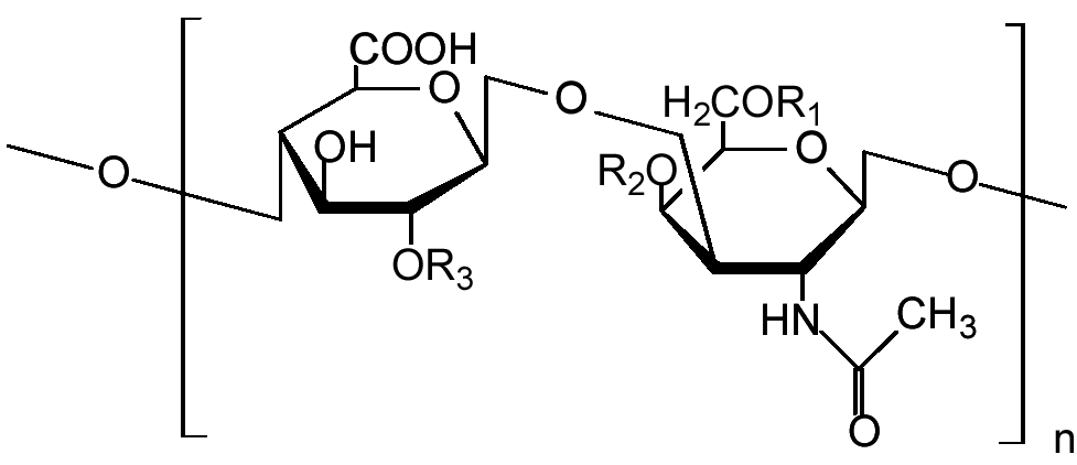 Chondroitin_Sulfate_Structure_NTP.png